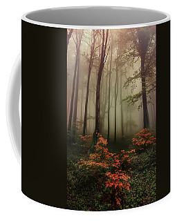 Autumn Mornin In Forgotten Forest Coffee Mug