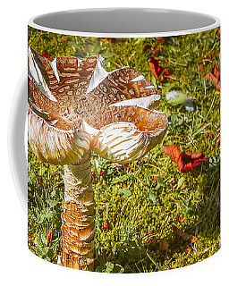 Autumn Mushroom Coffee Mug by Judi Saunders