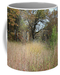 Coffee Mug featuring the photograph Autumn Oak Savanna by Scott Kingery