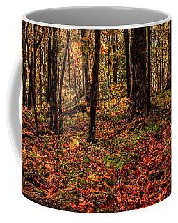 Autumn On The Ice Age Trail Coffee Mug