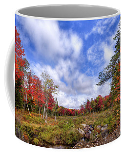 Coffee Mug featuring the photograph Autumn On The Stream by David Patterson