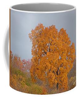 Autumn Over Prettyboy Coffee Mug
