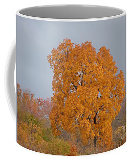 Autumn Over Prettyboy Coffee Mug