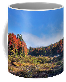 Coffee Mug featuring the photograph Autumn Panorama At The Green Bridge by David Patterson