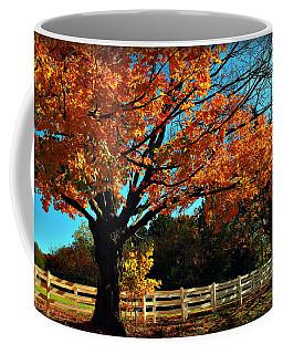 Coffee Mug featuring the photograph Autumn Rows by Joan  Minchak