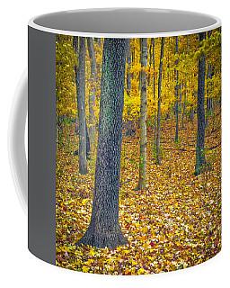 Coffee Mug featuring the photograph Autumn by Samuel M Purvis III