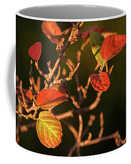 Autumn Shining Coffee Mug