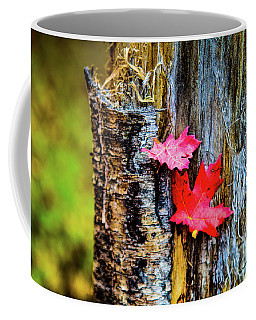 Autumn Silence Coffee Mug