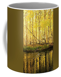 Autumn Soft Light In Stream Coffee Mug