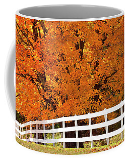 Autumn Sugar Maples Coffee Mug