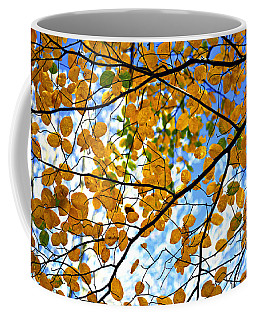 Coffee Mug featuring the photograph Autumn Tree Branches by Elena Elisseeva