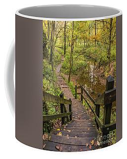 Autumn Walk Maquoketa Caves Coffee Mug by Tamara Becker