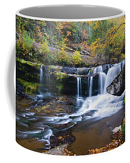 Coffee Mug featuring the photograph Autumn Waterfall by Steve Stuller