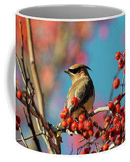 Coffee Mug featuring the photograph Autumn Waxwing by Mike Dawson