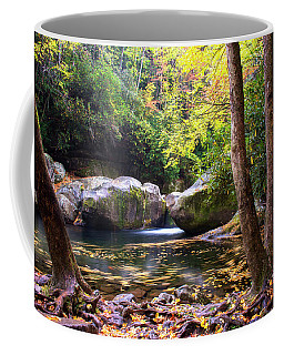 Autumn Whirlpool Coffee Mug