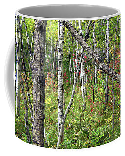 Autumn Woods Coffee Mug