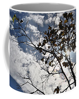 Autumn Yellow Back-lit Tree Branch Coffee Mug
