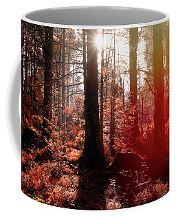 Autumnal Afternoon Coffee Mug