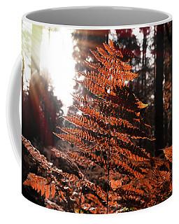 Autumnal Evening Coffee Mug