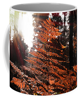 Autumnal Evening Coffee Mug