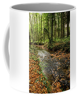 Autumnal Stream Coffee Mug
