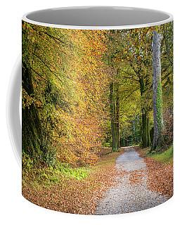 Autumnal Walkway Coffee Mug