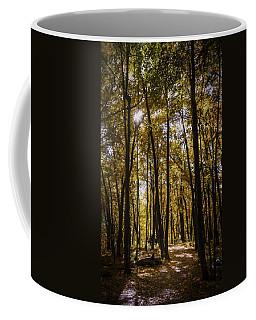 Autumns Fire Coffee Mug