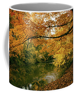 Coffee Mug featuring the photograph Autumn's Golden Tones by Jessica Jenney