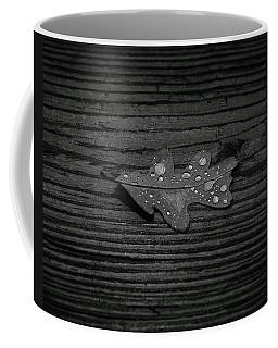 Autumns Past Coffee Mug