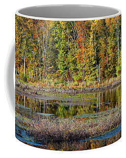 Coffee Mug featuring the photograph Autumns Quiet Moment by Karol Livote