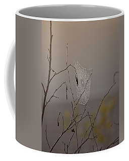 Autumns Web Coffee Mug