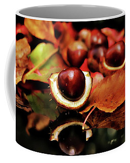 Autums Finest Colors Coffee Mug