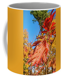 Autunm Beauty Coffee Mug