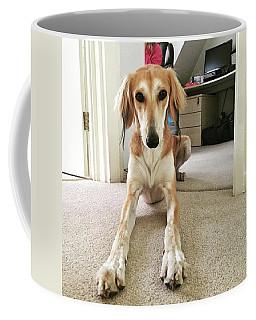 Ava On Her First Birthday #saluki Coffee Mug