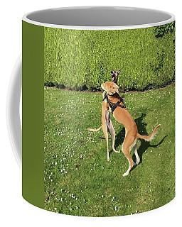 Ava The Saluki And Finly The Lurcher Coffee Mug