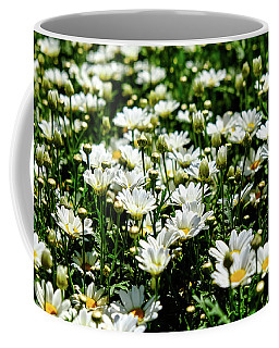 Coffee Mug featuring the photograph Avalanche Sun Daises by Monte Stevens