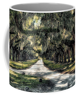 Avenue Of Oaks Coffee Mug