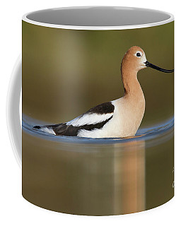 Avocet Cooling Off Coffee Mug