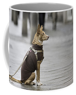 Awaiting His Master Coffee Mug