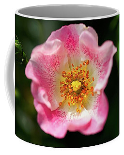 Awesome Pink Coffee Mug