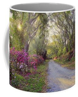 Azalea Lane By H H Photography Of Florida Coffee Mug by HH Photography of Florida