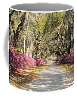 azalea lined road in Spring Coffee Mug