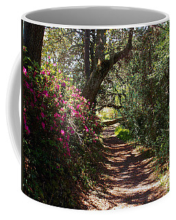 Azalea Path  Coffee Mug