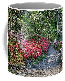Azalea Path Coffee Mug