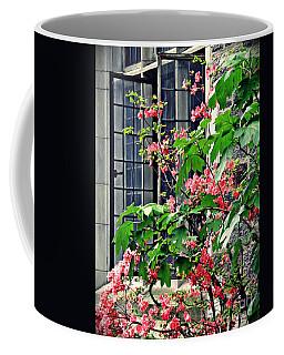 Azaleas At The Window   Coffee Mug by Sarah Loft