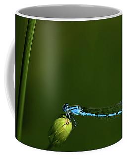 Azure Damselfly-coenagrion Puella Coffee Mug