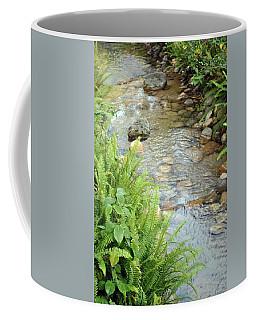 Coffee Mug featuring the photograph Babble Brook by Amanda Eberly-Kudamik