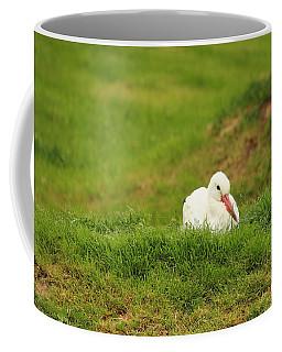 Baby Adebar Coffee Mug