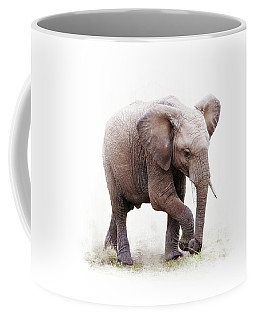Baby African Elephant Isolated On White Coffee Mug