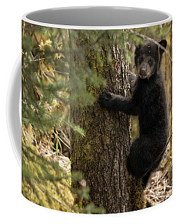 Baby Bear Climbs A Tree Coffee Mug